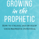 Growing in the Prophetic Audio Course